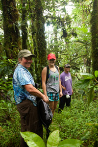 Hikers in the cloud forest, Pohnpei, Federated States of Micronesia (FSM)